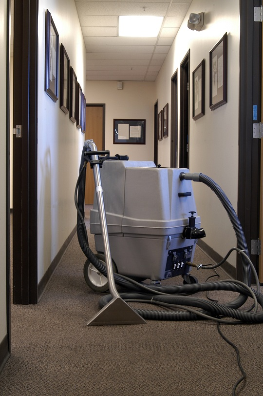 how to steam clean carpet without a steam cleaner