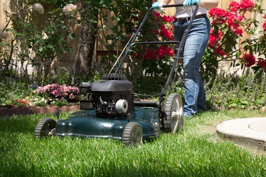 How Soon After Fertilizing Can I Mow Lawn? - Landscapers