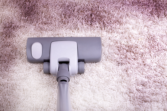 Best Way To Remove Cat Urine From Mattress How To Remove Dirt From Carpet - Carpet Cleaners
