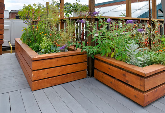 Build A Raised Garden Bed - Landscapers - Seva Call Blog
