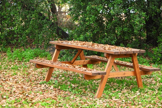... Art , Picnic Table With Food , Family Picnic Table , Picnic Food