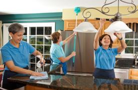 Maid Service Professionals